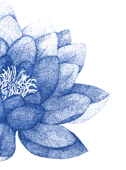 Blue image of lotus flower